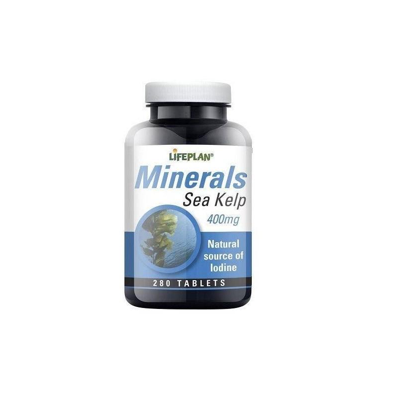 Sea Kelp - BODELHA + CÁLCIO - 280 Comprimidos de 400 mg