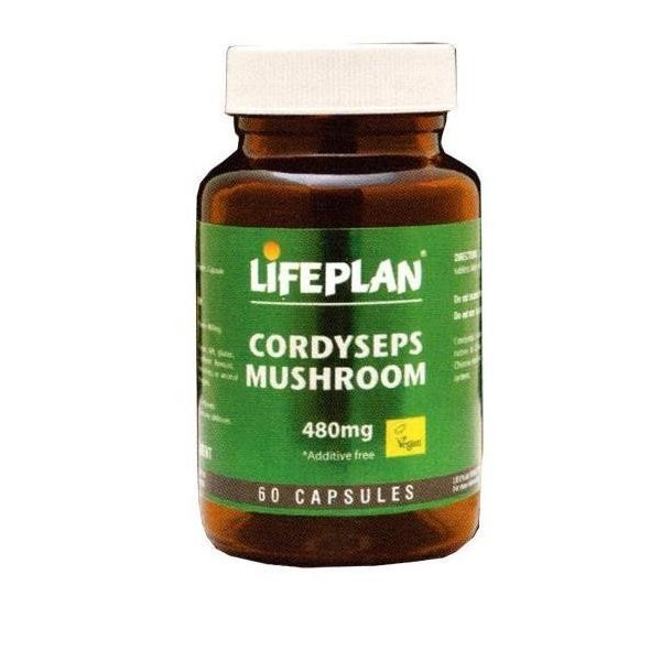 CORDYSEPS MUSHROOM - Cogumelo Cordyseps 60 cáps. 480mg