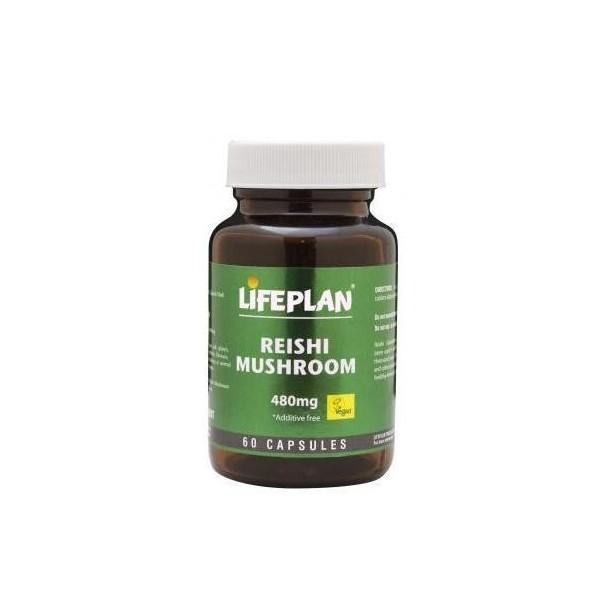 REISHI MUSHROOM - Cogumelo Reishi 60 caps, 480 mg