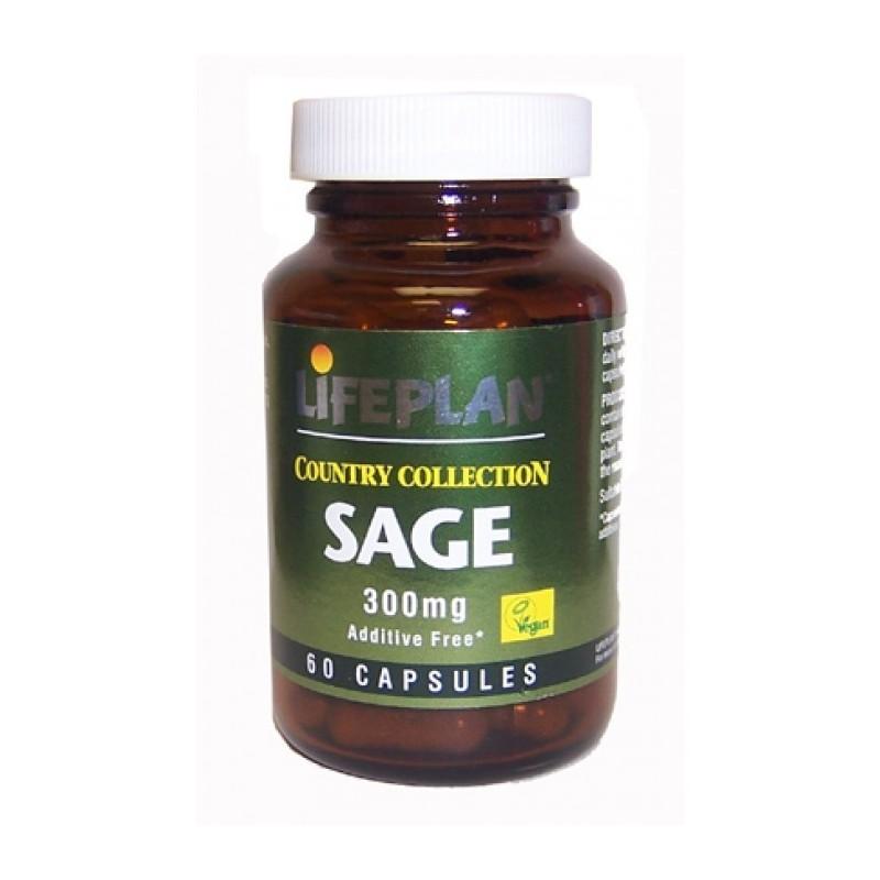 SAGE - SALVA - 60 Cápsulas de 300mg